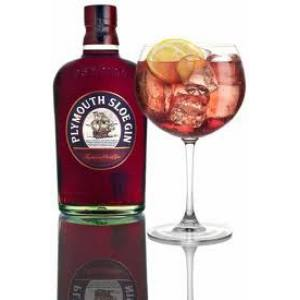 Plymouth Sloe 70 Cl.