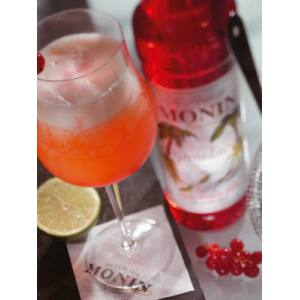 Monin Sirope Granadina